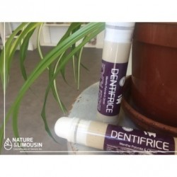Dentifrice menthe (rechargeable)
